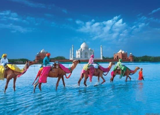 Индию: Экскурсии + Пляж (You Travel) Витебск